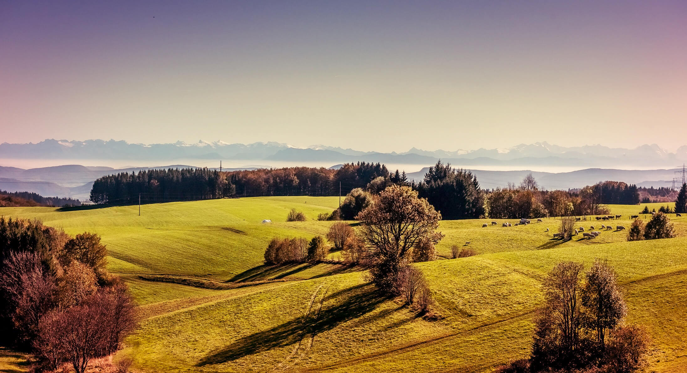 Alpenpanorama im Landkreis Waldshut